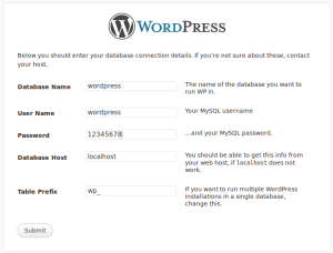 wordpress_install_3