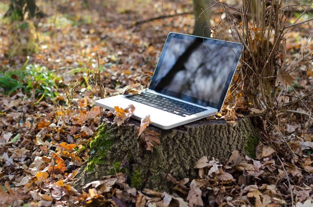 Laptop auf einem Baumstumpf