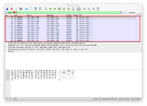 Wireshark telnet Session